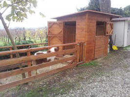 CASINA E RECINTO IN LEGNO PER PONY
